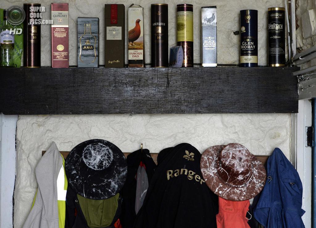 Великобритания. Фарне, Нортамберленд, Англия. 18 ноября 2013 года. Прихожая в домике рейнджеров, заставленная бутылками шотландского виски. (REUTERS/Nigel Roddis)