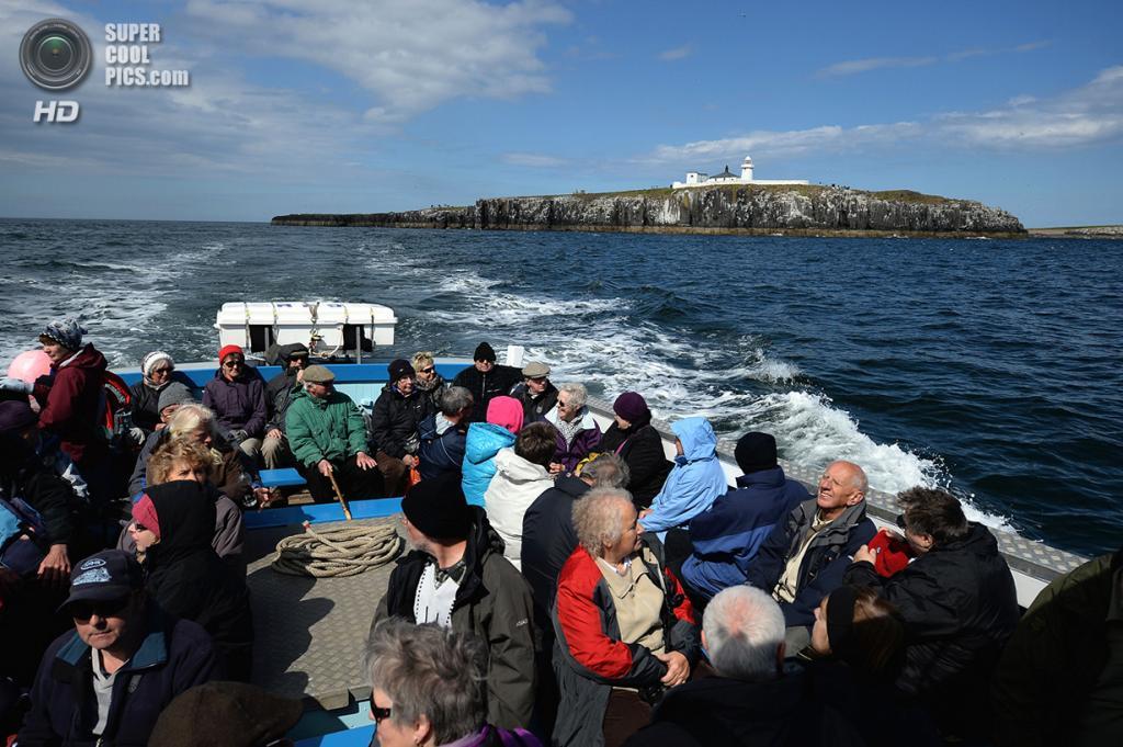 Великобритания. Фарне, Нортамберленд, Англия. 16 мая 2013 года. Туристы направляются на экскурсию к архипелагу. (Jeff J Mitchell/Getty Images)
