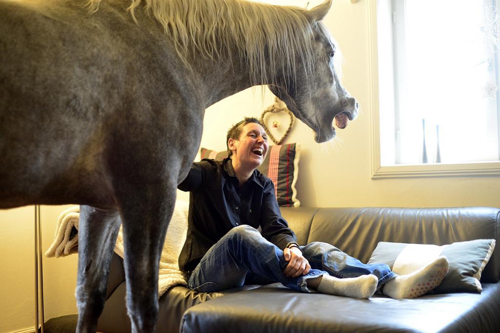 Германия. Хольт, Шлезвиг-Гольштейн. 19 февраля. Доктор Стефани Арндт в собственном доме с арабской лошадью по кличке Назар. (Patrick Lux/Getty Images)