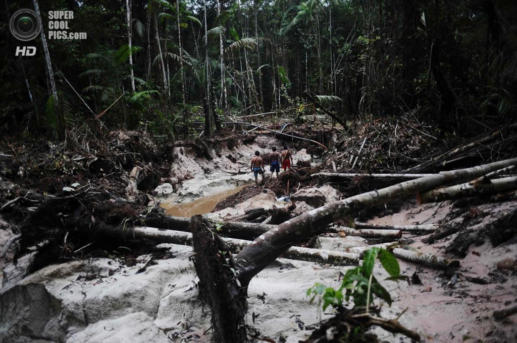 Бразилия. Пара. 20 января. Воины-мундуруку ищут следы нелегальных золотодобытчиков на своей территории. (REUTERS/Lunae Parracho)