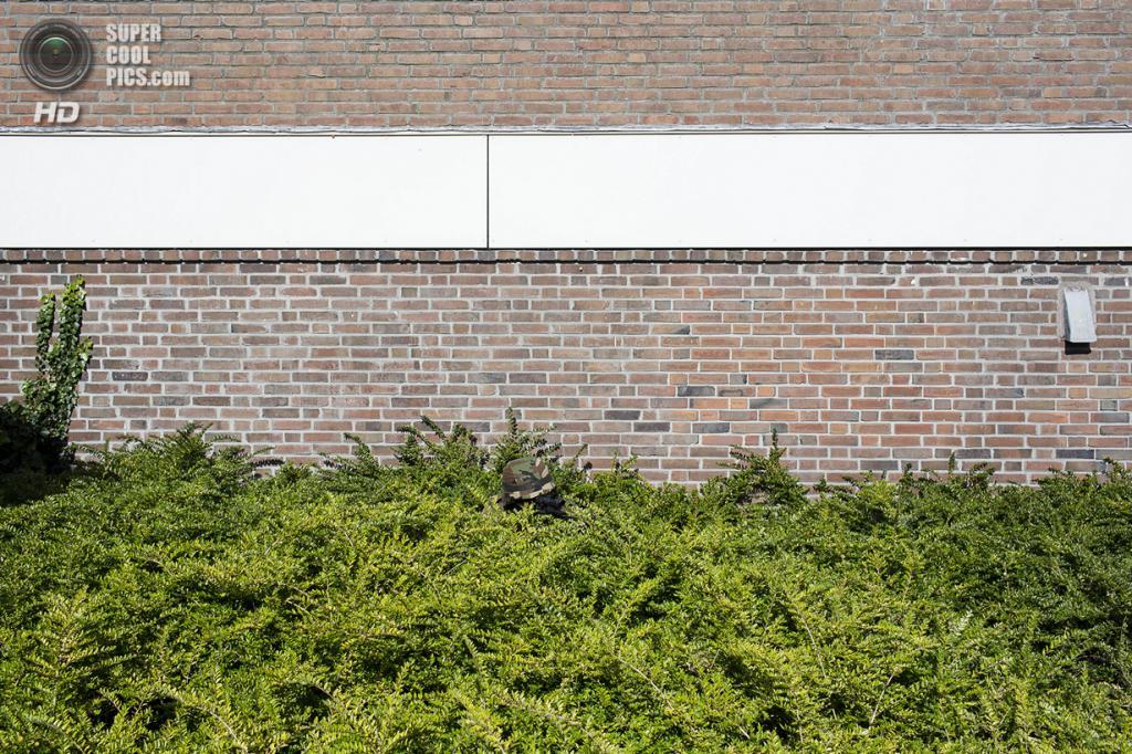 Нидерланды. Хук-ван-Холланд, Роттердам, Южная Голландия. 8 декабря 2013 года. В засаде. (Peter de Krom)