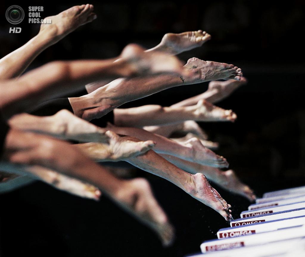 Старт эстафеты 4x100 метров вольным стилем среди мужчин на чемпионате мира по водным видам спорта во Дворце Сан-Жорди. Место съёмки: Испания. Барселона, Каталония. (Adam Pretty/2014 Sony World Photography Awards)