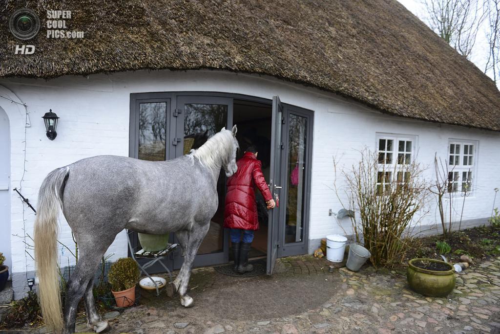 Германия. Хольт, Шлезвиг-Гольштейн. 19 февраля. Стефани с Назаром заходят в дом. (Patrick Lux/Getty Images)