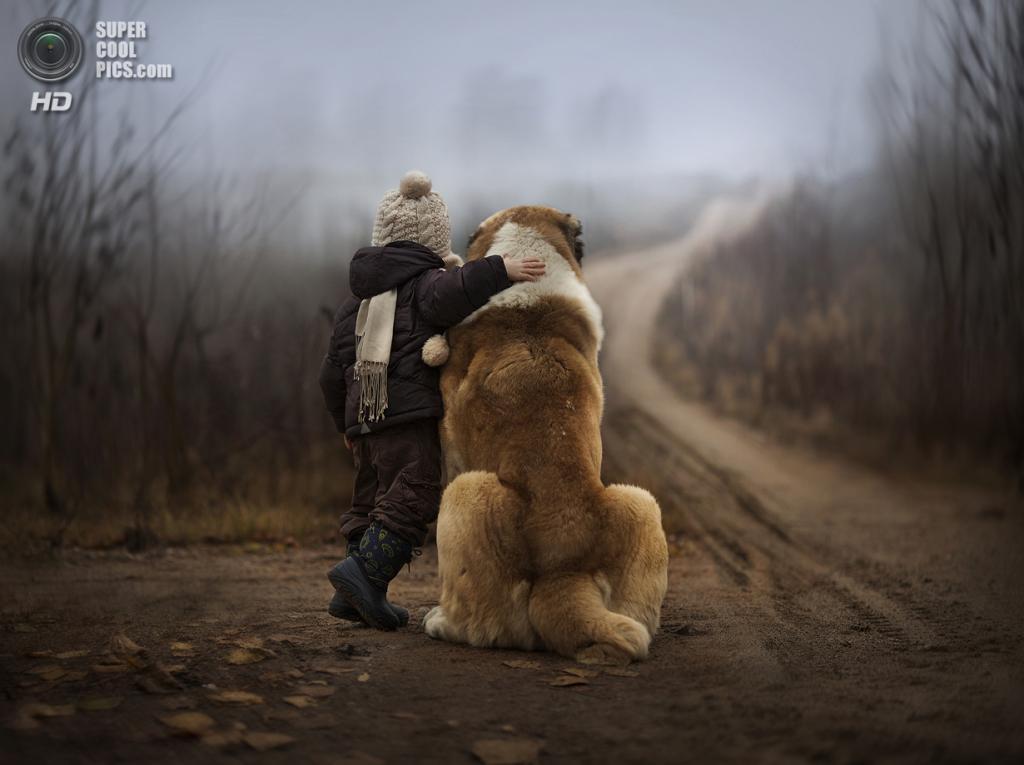 Untitled. (Elena Shumilova)