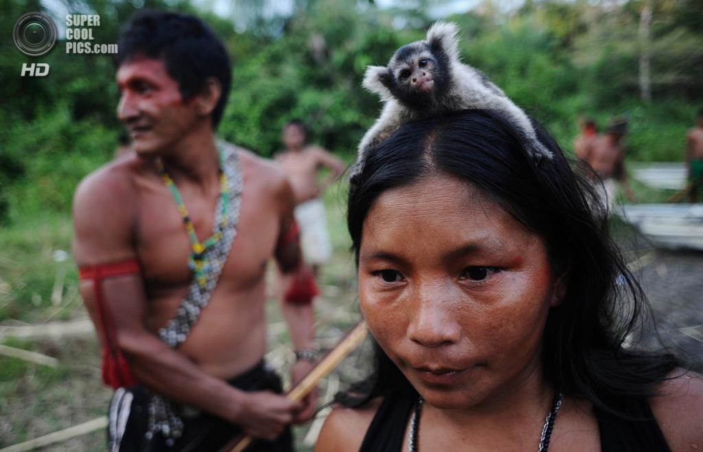 Бразилия. Пара. 25 января. Женщина-мундуруку с ручной обезьянкой на голове. (REUTERS/Lunae Parracho)