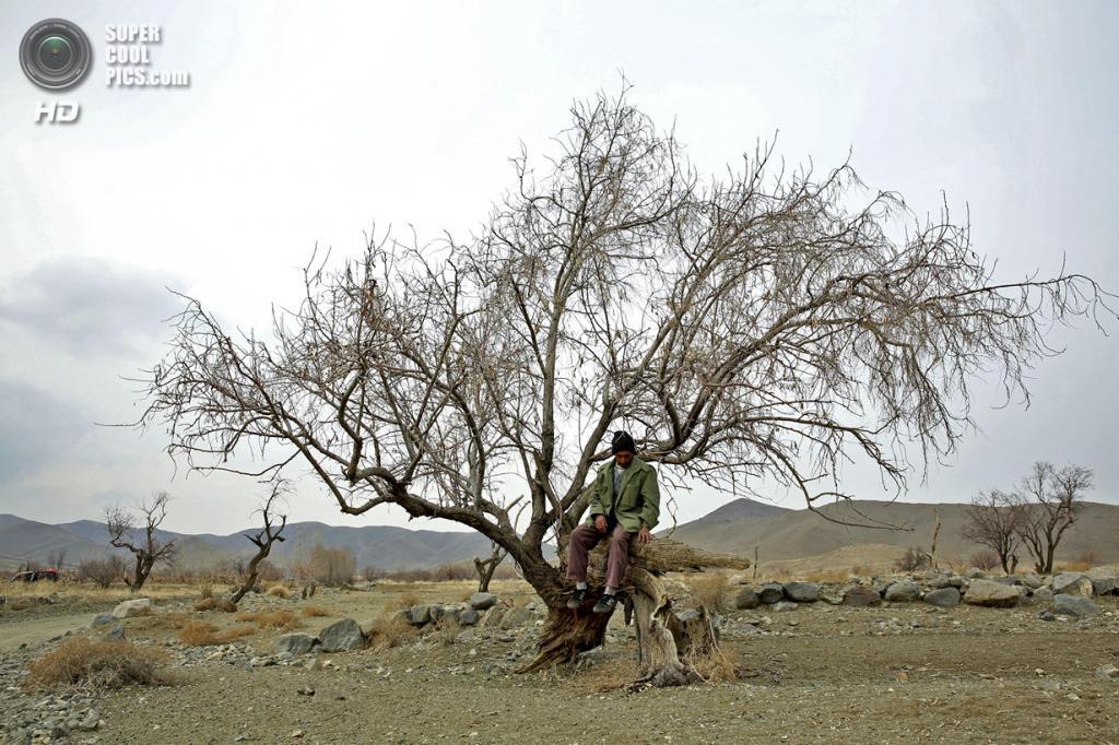 Иран. Западный Азербайджан. 16 февраля. На озере Урмия. (AP Photo/Ebrahim Noroozi)