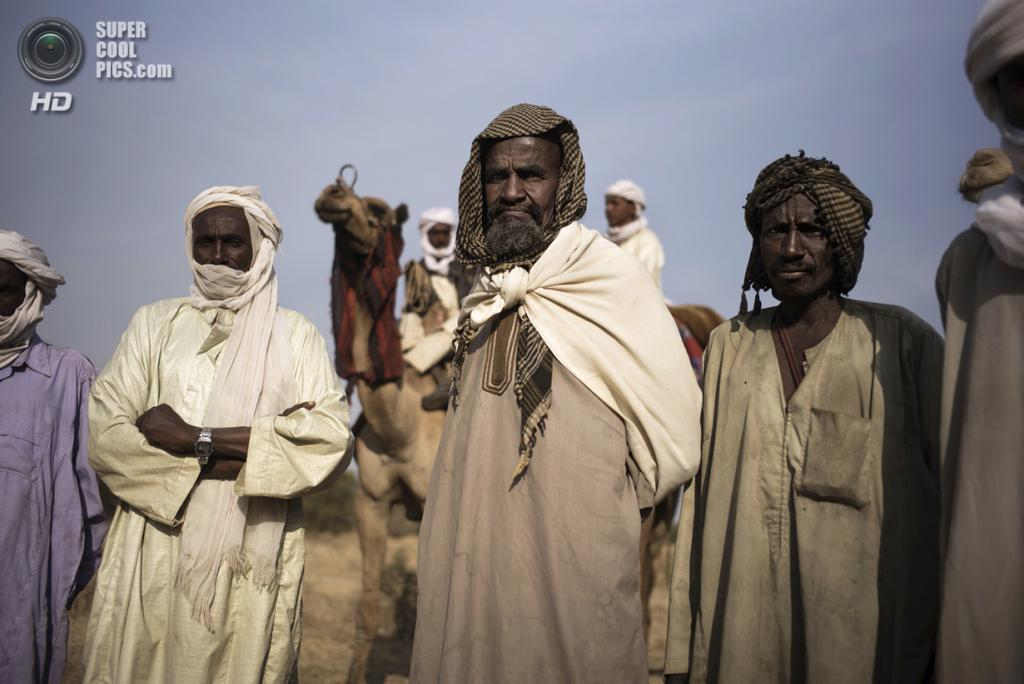 Чад. Гоз-Джарат, Саламат. 21 февраля. Местные жители наблюдают за сожжением слоновой кости. (MARCO LONGARI/AFP/Getty Images)