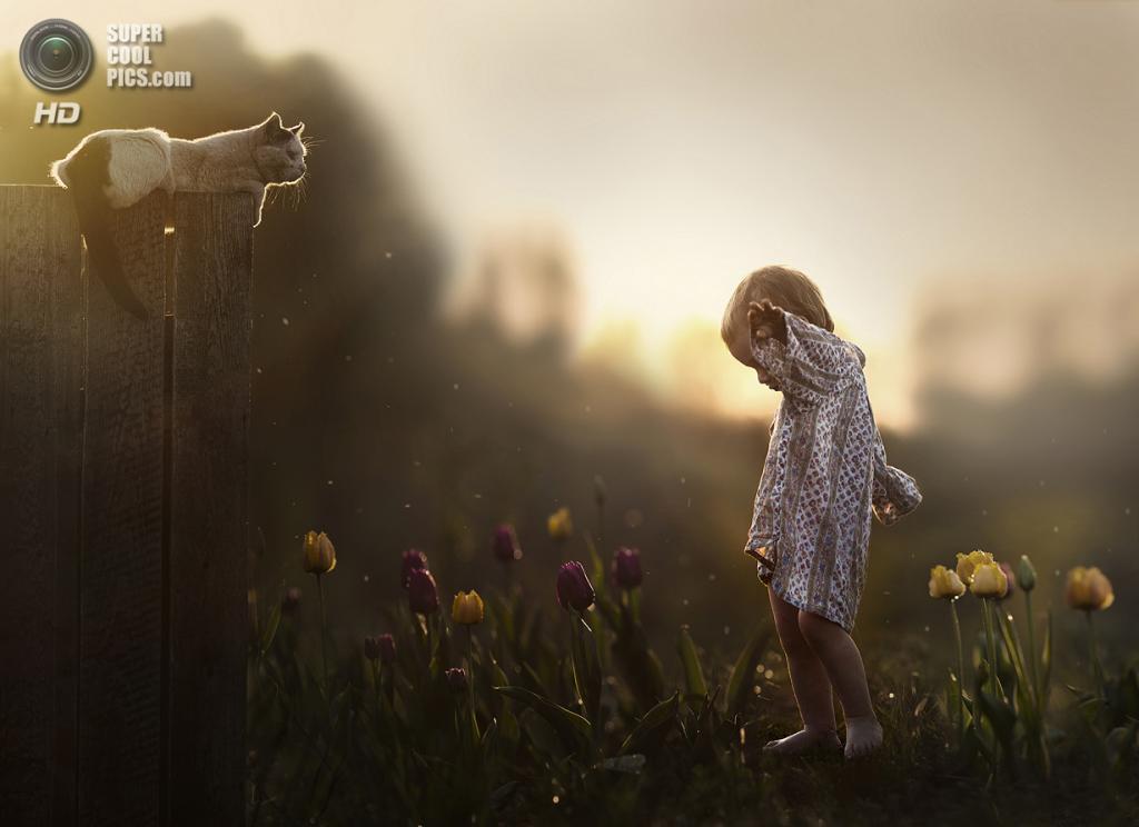 Summertime. (Elena Shumilova)