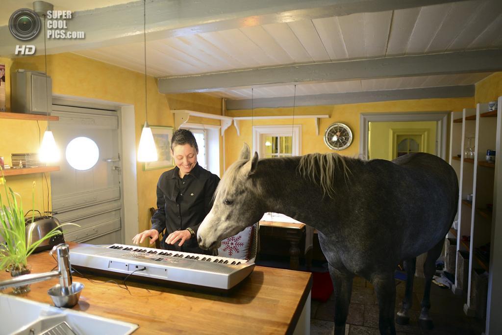 Германия. Хольт, Шлезвиг-Гольштейн. 19 февраля. Назар слушает музицирование хозяйки. (Patrick Lux/Getty Images)