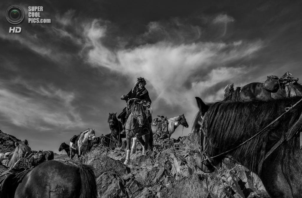 Казахи в Монголии имеют за плечами внушительную историю верховой езды — считается, что древние кочевые племена Средней Азии были первыми, кто приручил и одомашнил лошадей. Место съёмки: Монголия. Алтай-Таван-Богд, Баян-Улгий. (Palani Mohan/2014 Sony World Photography Awards)