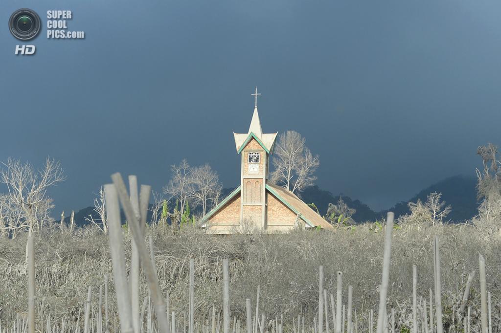 Индонезия. Кутарайят, Северная Суматра. 8 февраля. Церковь среди покрытой вулканическим пеплом растительности. (Adek Berry/AFP/Getty Images)