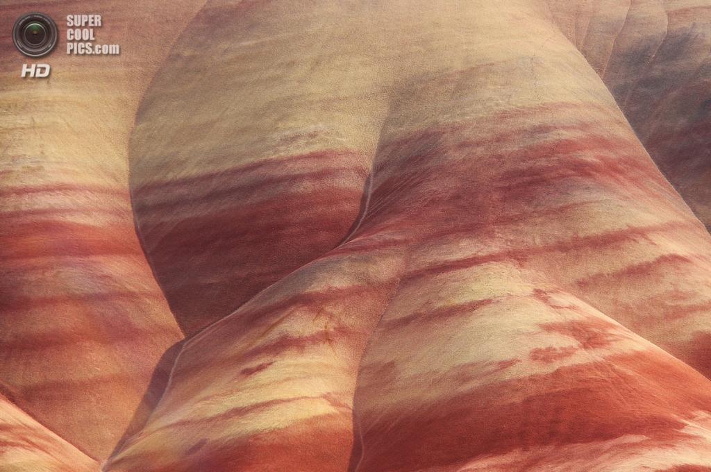 США. Орегон. «Пейнтед-Хиллс» в Государственном заповеднике John Day Fossil Beds. (Rupert Ganzer)