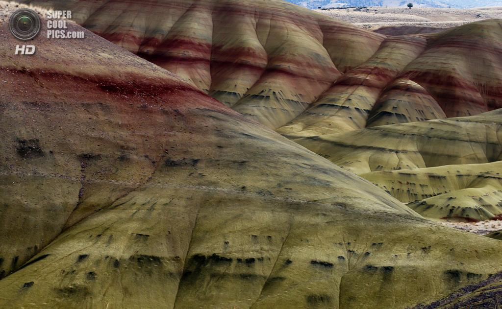 США. Орегон. «Пейнтед-Хиллс» в Государственном заповеднике John Day Fossil Beds. (Kristin)