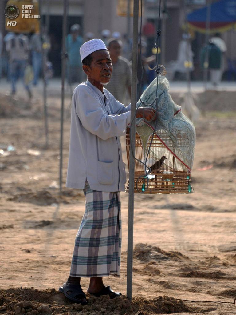 Таиланд. Русо, Наратхиват. 23 марта. На ежегодном традиционном конкурсе птичьего пения. (Madaree Tohlala/AFP/Getty Images)