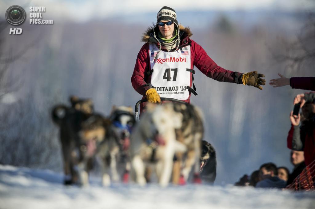 США. Уиллоу, Аляска. 2 марта. Один из пяти норвежцев, приехавших на гонку в этом году, со своей упряжкой. (REUTERS/Nathaniel Wilder)
