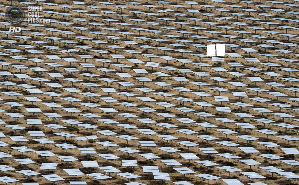 США. Сан-Бернардино, Калифорния. 3 марта. Не такой, как все: один гелиостат расположен вертикально. (Ethan Miller/Getty Images)