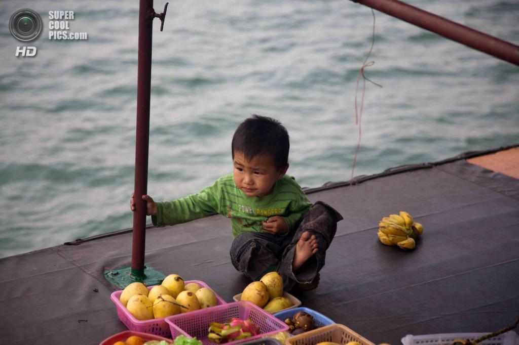 Вьетнам. Куангнинь. Бухта Халонг в Тонкинском заливе Южно-китайского моря. (gerrylawson)
