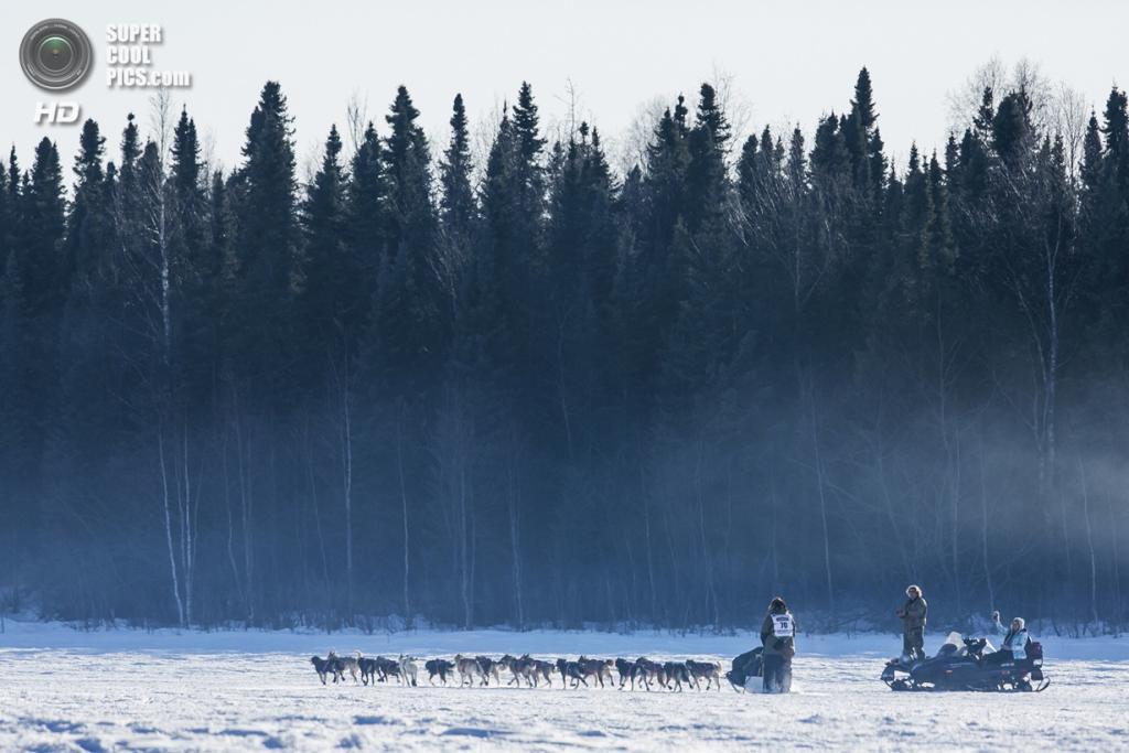 США. Уиллоу, Аляска. 2 марта. Упряжка Сонни Линднера направляется в лес — последняя среди всех участников. (REUTERS/Nathaniel Wilder)