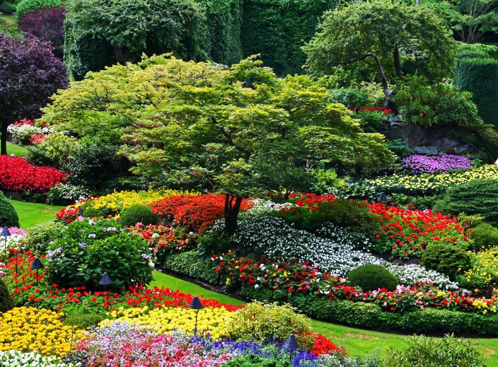 Сады Бучартов (12 фото)
