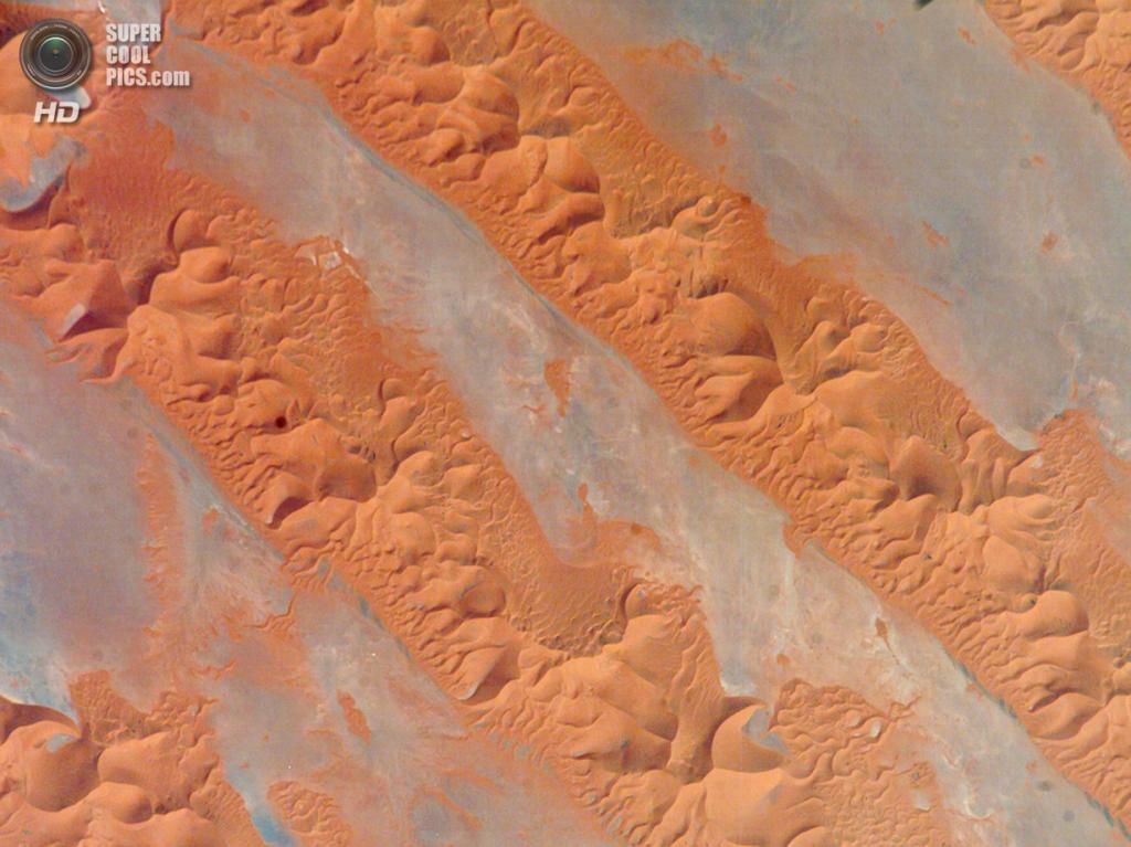 Макро: Песчаные дюны в Большом Восточном Эрге. (P. Kelly)