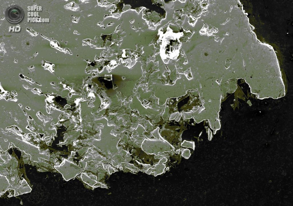 Микро: Полированный образец магнетита. (P. Kelly)
