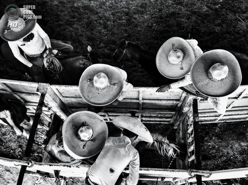 Подготовка к «чаррерии» — мексиканскому родео. (Cesar Rodriguez/Smithsonian.com)