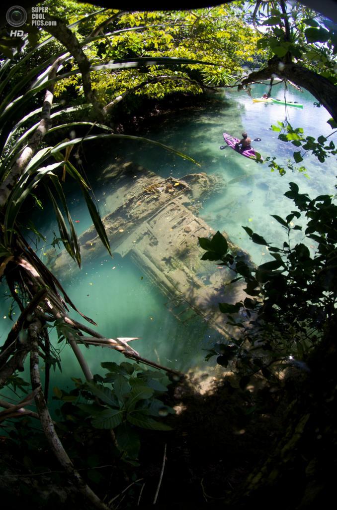 Категория: Topside. 2 место. (Tony Cherbas/UnderwaterPhotography.com)