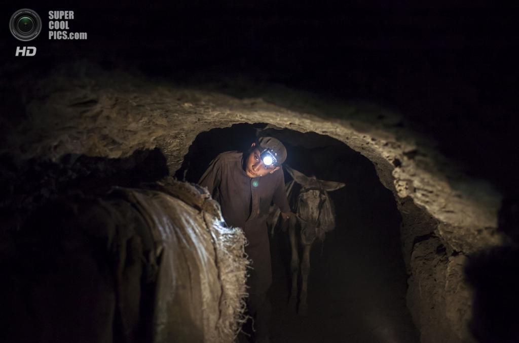 Пакистан. Чоа-Сайдан-Шах, Пенджаб. 29 апреля. Поводырь ведёт ослов, нагруженных углём, обратно на поверхность. (REUTERS/Sara Farid)