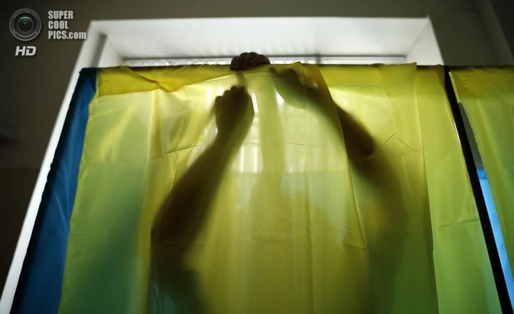 Украина. Киев. 25 мая. Кабинка для голосования. (REUTERS/David Mdzinarishvili)