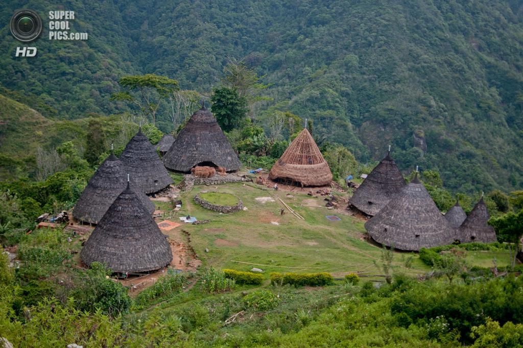Традиционные дома племени ваэребо, живущего на Восточных Малых Зондских островах. (Aulia Erlangga/CIFOR)
