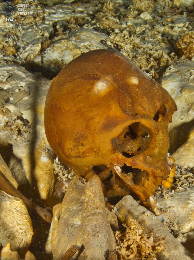 Мексика. Сак-Актун, Юкатан. Останки 16-летней девочки в подводной пещере Хойо-Негро. Это самые древние останки человека, найденные на территории Северной Америки — их возраст оценивается в 12-13 тыс. лет. (National Geographic/Paul Nicklen)