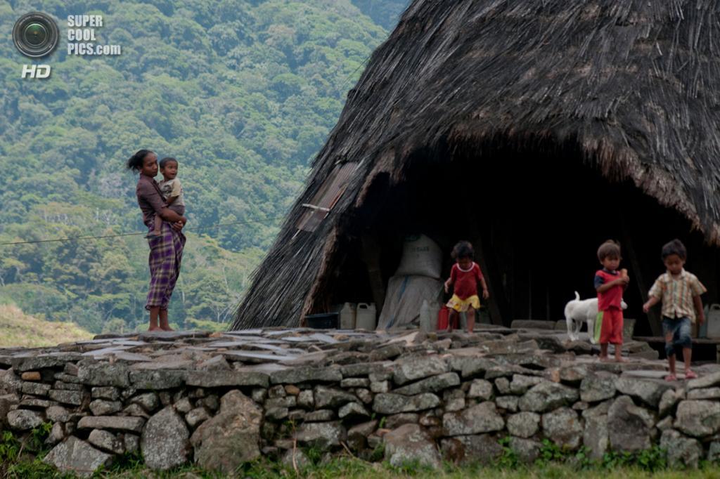 Женщина из племени ваэребо с детьми у своего жилища. (Aulia Erlangga/CIFOR)