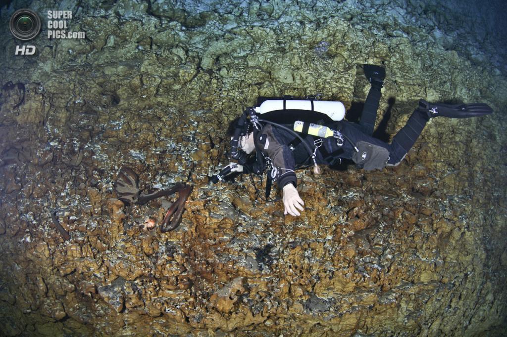 Мексика. Сак-Актун, Юкатан. Дайвер указывает лучом света на находку. (National Geographic/Paul Nicklen)