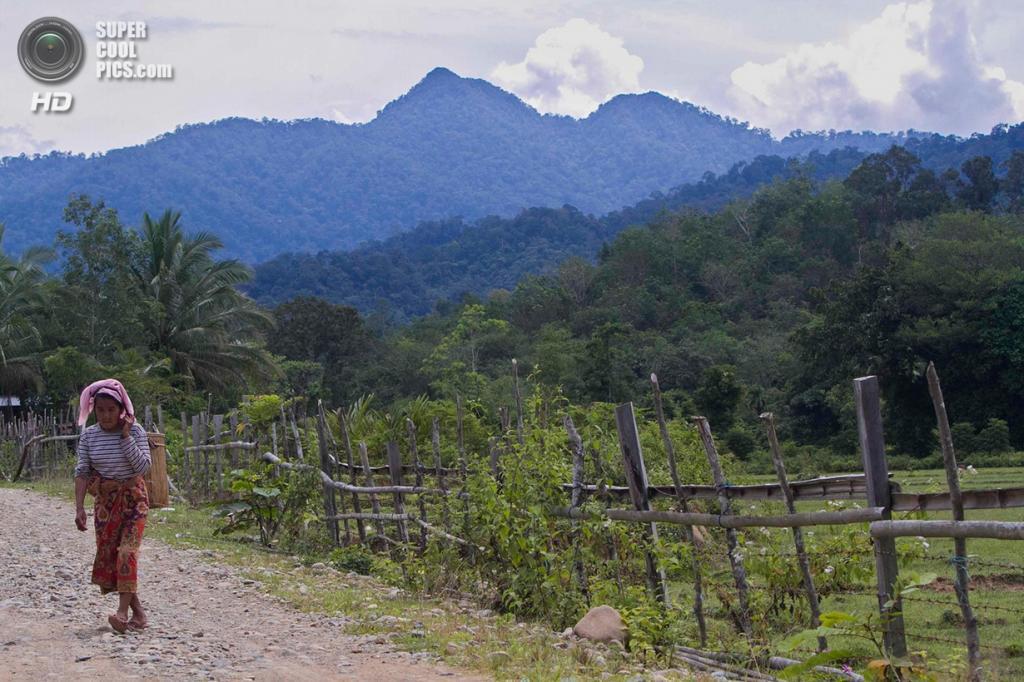 Жительница деревни Лубук-Берингин. (Tri Saputro/CIFOR)