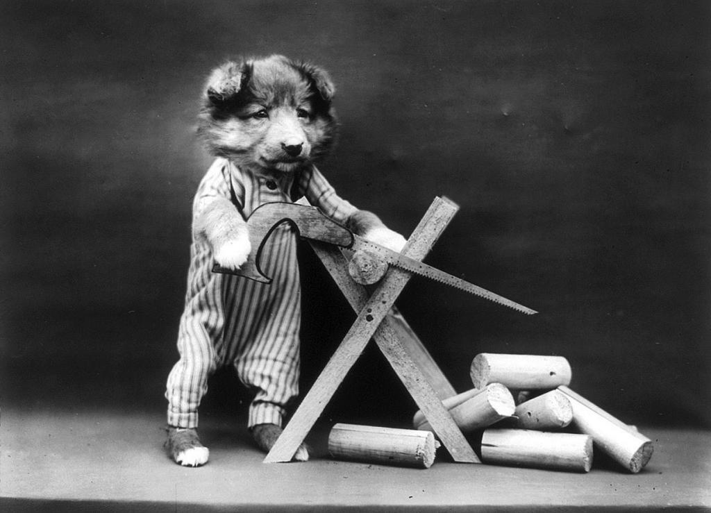 Животные Гарри Уиттера Фриса. «Фотошоп» столетней давности (15 фото)