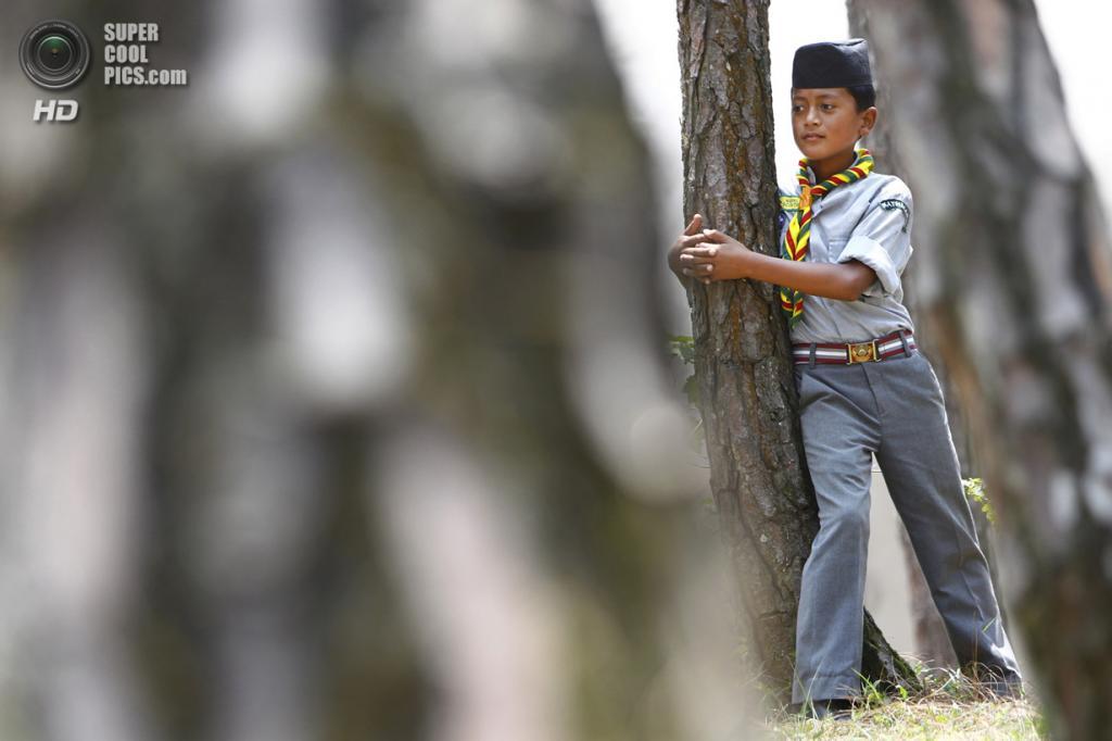 Непал. Катманду. 5 июня. Школьники и студенты обнимают деревья в честь Всемирного дня окружающей среды. (AP Photo/Niranjan Shrestha)