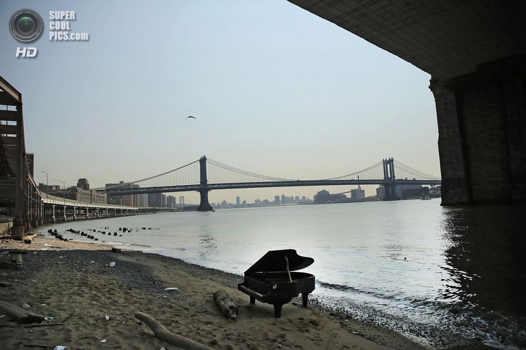 США. Нью-Йорк. 3 июня. Старый рояль под Бруклинским мостом. (Spencer Platt/Getty Images)