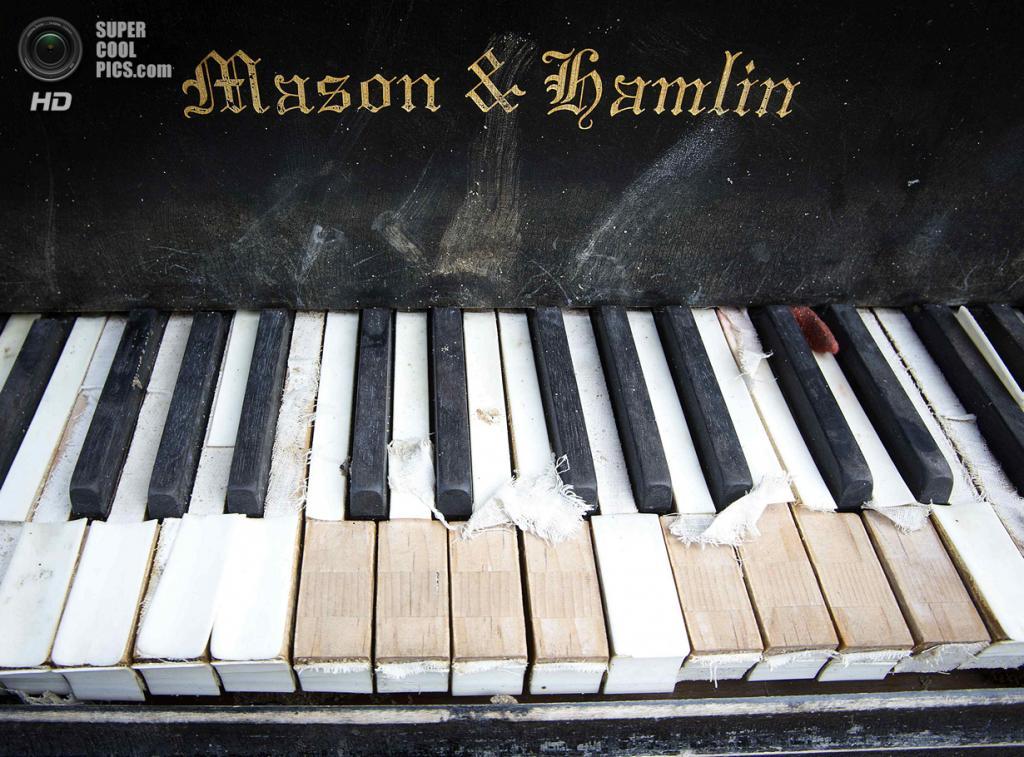 США. Нью-Йорк. 31 мая. Старый рояль под Бруклинским мостом. (REUTERS/Carlo Allegri)
