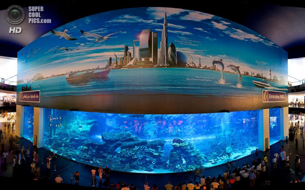 2 место. ОАЭ. Дубай. Аквариум в торгово-развлекательном центре «Дубай». Общий объем воды составляет 10 млн л. (Paul Gregory)