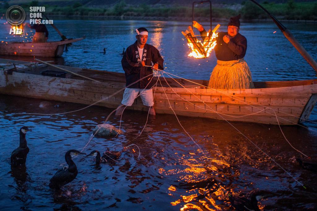 японские рыболовные