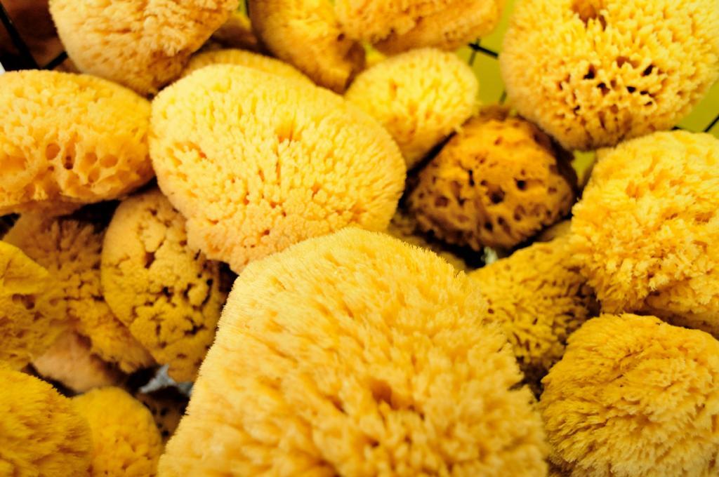 More sponges