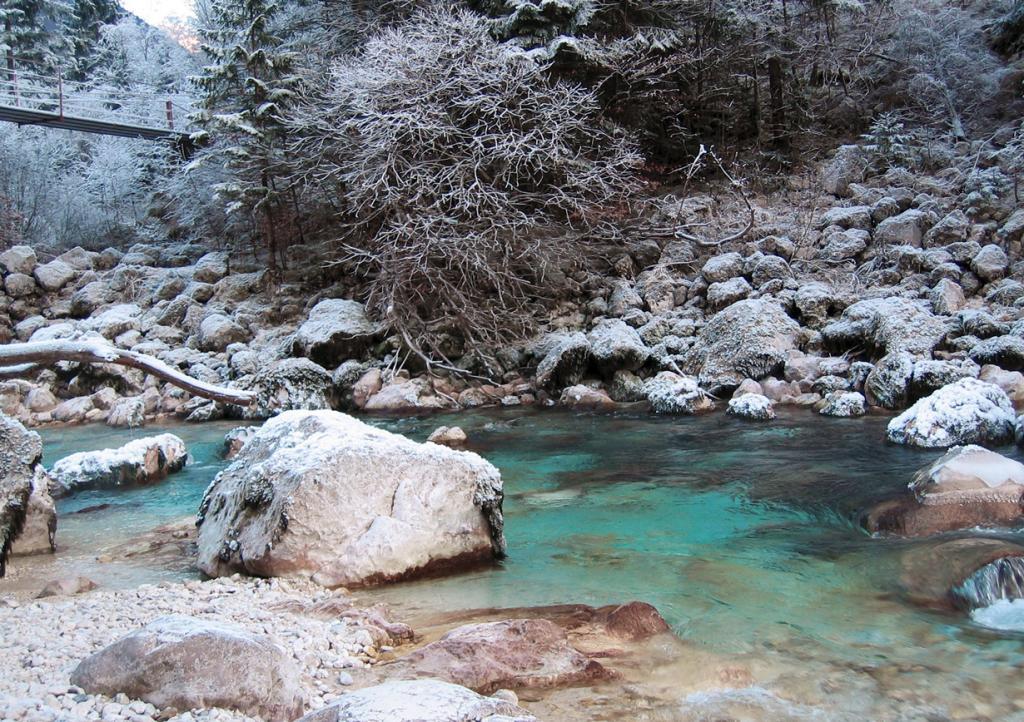 Река Соча. (capsicina)