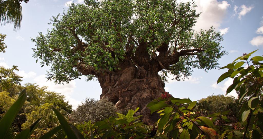 США. Флорида. «Королевство животных» Всемирного центра отдыха Уолта Диснея. Древо жизни — символ парка. Высота — 44 м, ширина — 15 м. (Scott Smith)