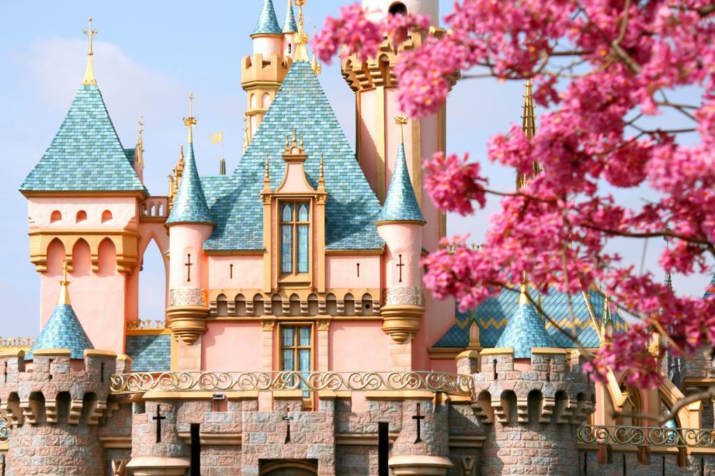 США. Анахайм. Калифорния. Замок Спящей Красавицы. (Andy Castro)