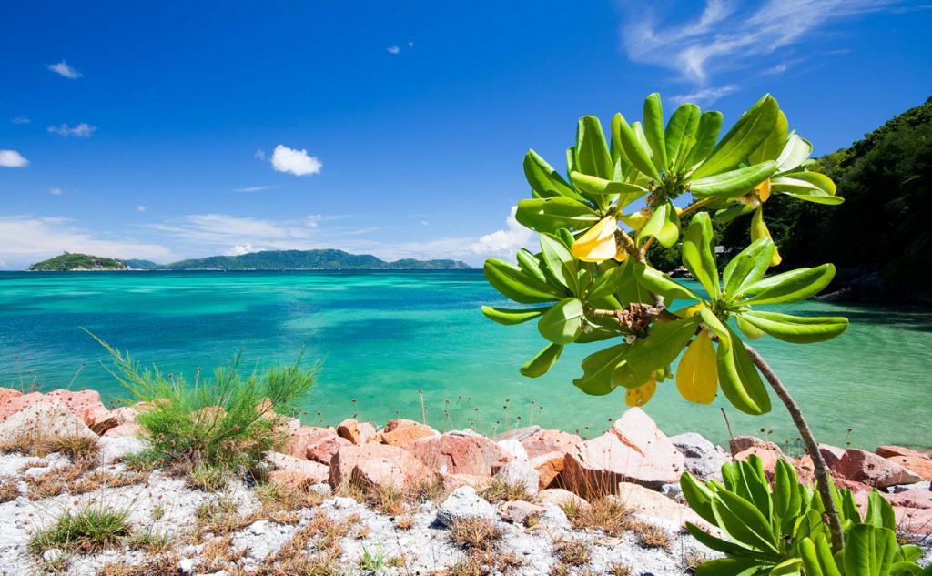 Индийский океан. Сейшельские Острова. (Franck Vervial)
