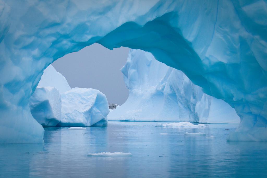Антарктида. Айсберги. (Michael Sale)