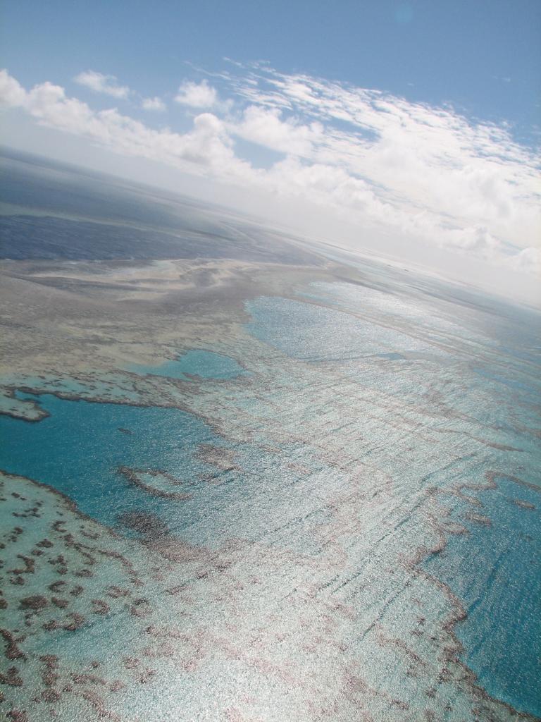 Коралловое море. Австралия. Большой Барьерный риф. (Barb)