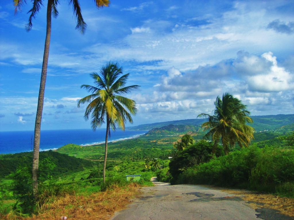 Карибское море. Остров Барбадос. (Ben Ramirez)