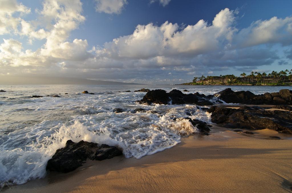 Тихий океан. Остров Мауи. (Bruce Irschick)