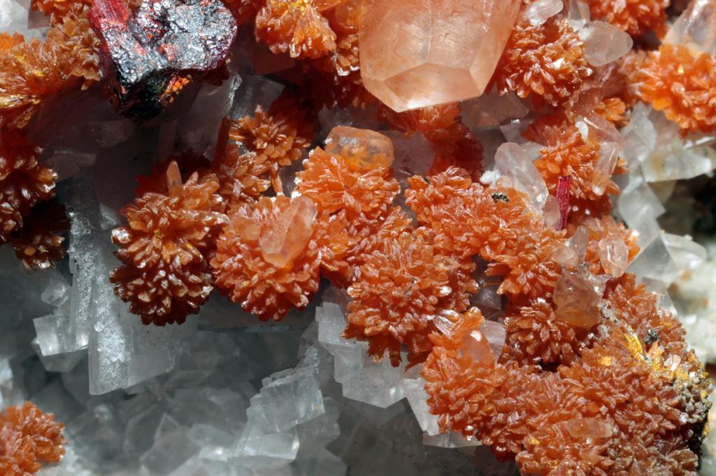 Аурипигмент — сульфид мышьяка. Минерал ярко-жёлтого или оранжевого цвета содержит 61% мышьяка и 39% серы. 0,05 грамма этого вещества является достаточной дозой чтобы убить человека. Месторождение: Грузия, Иран, Китай, Перу, США. (Géry Parent)